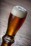 Pinte de Honey Brown Beer Photos libres de droits