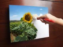 Pinte el concepto del eco Imagen de archivo