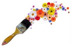 Pinte las flores Fotos de archivo libres de regalías