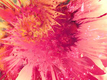Pinte a textura do respingo do Splatter Foto de Stock