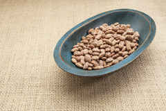 Pinto bean Royalty Free Stock Photography