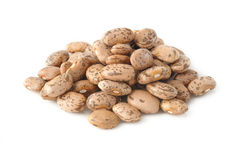 Pinto bean Stock Photography