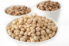 Pinto bean and garbanzo bean Royalty Free Stock Photography