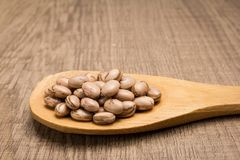 Pinto Bean legume. Grains in wooden spoon. Rustic. Phaseolus vulgaris is scientific name of Pinto Bean legume. Also known as Frijol Pinto and Feijao Carioca Stock Images