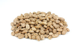 Pinto beans. A small pile of the common pinto bean Royalty Free Stock Images