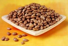 Pinto Beans lizenzfreie stockbilder