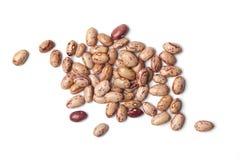 Pinto beans Stock Photos