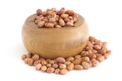 Pinto beans Royalty Free Stock Images