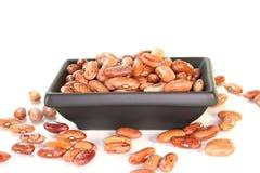 Pinto beans Stock Photo