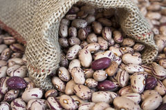 Pinto beans. Raw dry Pinto beans in small bag Royalty Free Stock Photography