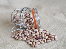 Pinto beans. In glass jar Stock Photos