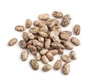 Pinto Beans Fotografia Stock Libera da Diritti