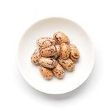 Pinto Beans Stockbild