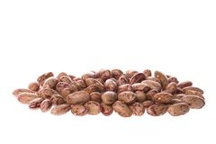 Pinto Beans. Isolated image of pinto beans Stock Photo