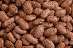 Pinto Beans Fotografía de archivo libre de regalías