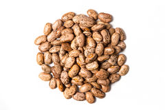 Pinto Beans Photographie stock