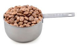 Pinto beans in an American cup measure Royalty Free Stock Photos