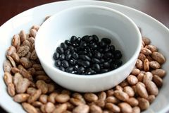 Pinto beans and black beans Stock Image