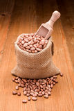 Pinto beans in burlap bag Royalty Free Stock Images