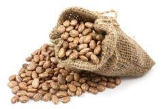 Pinto beans in canvas sack Royalty Free Stock Photos