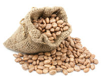 Pinto beans in canvas sack Stock Images