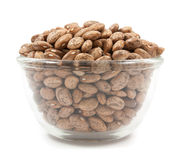 Pinto beans on glass cup isolated Royalty Free Stock Photo