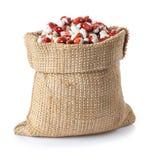 Pinto Beans i säck royaltyfri bild