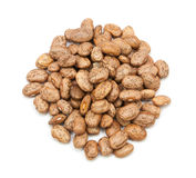 Pinto beans isolated Royalty Free Stock Photo