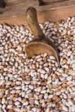 Pinto Beans orgánico en el mercado de los granjeros Imagen de archivo