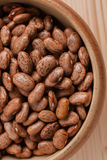 Pinto Beans Royalty Free Stock Photography