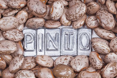 Pinto beans texture Stock Photos