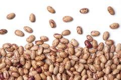 Pinto beans on white background Royalty Free Stock Photo