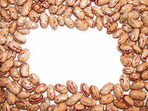 Pinto beans. On white background with an empty space at the centre Stock Photography