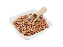 Pinto beans in white bowl with wooden shovel Royalty Free Stock Image