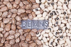 Pinto and Black Eyed beans texture Royalty Free Stock Images