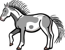 Pinto Pony. Vector illustration of a paint or pinto horse, standing with one foot raised Royalty Free Stock Images