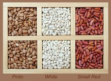 pinto, white, and small red beans Stock Photography