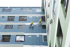 Pintores que penduram no rolo, cor de pintura na parede da construção imagem de stock royalty free
