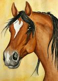 Pintura árabe do cavalo Imagem de Stock Royalty Free