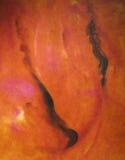 "Pintura a óleo ""flamenco"" fotografia de stock"