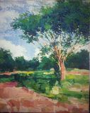 Pintura a óleo gigante do acrílico do impressionismo da árvore do isolado ilustração do vetor