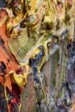 Pintura a óleo nos detalhes com cores saturadas ilustração royalty free