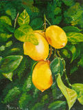Pintura a óleo original Fotografia de Stock Royalty Free
