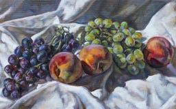 Pintura al óleo en lona de una composición de la fruta Imagen de archivo libre de regalías