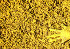 Pintura amarela Fotos de Stock