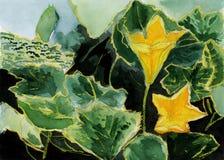Pintura amarela da ilustração da flor da aguarela Ilustração Royalty Free
