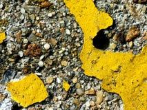 Pintura amarilla en el concreto Imagenes de archivo