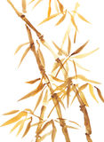 Pintura asiática do estilo da aquarela de bambu Foto de Stock Royalty Free