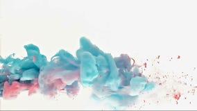 A pintura azul e cor-de-rosa é dissolvida na água video estoque