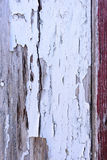 Pintura blanca Crackled Fotografía de archivo libre de regalías